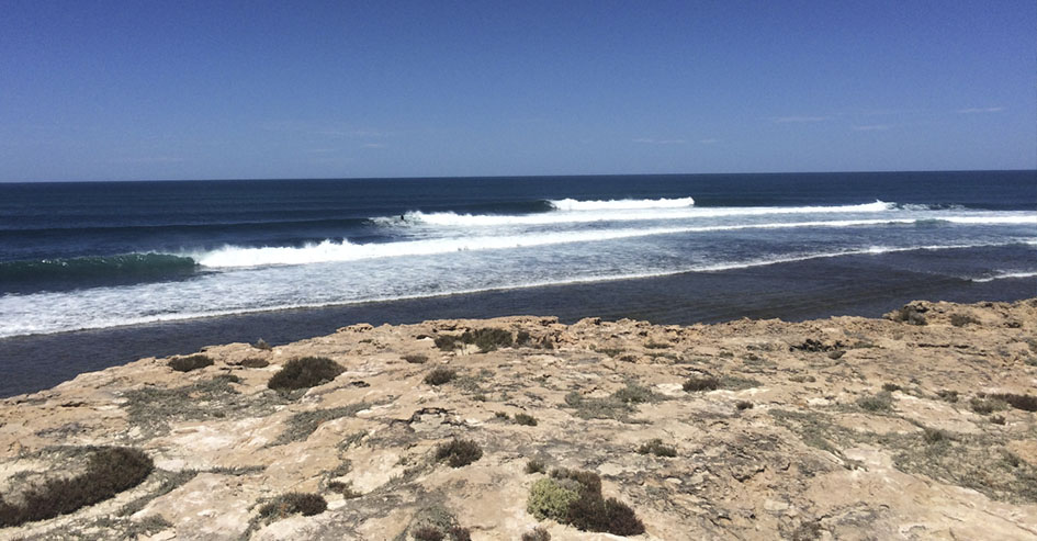 cactus beach austrália